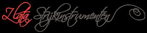 Viool en strijkstok kopen - Vioolles - Hilversum