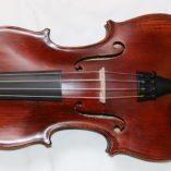 Roemeense viool Gems 1 voorkant