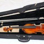Scott Cao STV500E viool