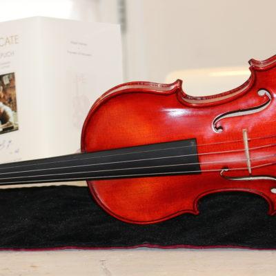 boheemse viool