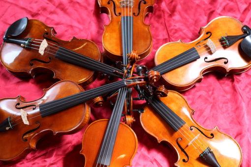 Wilfer duitse viool te koop