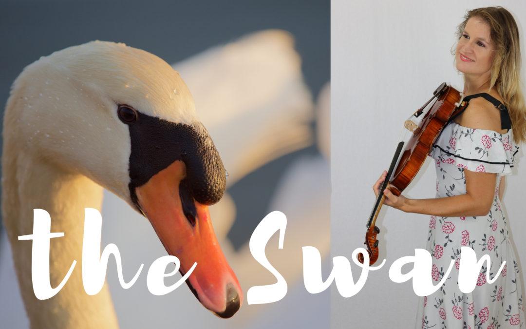[Video] de Zwaan van Saint-Saëns (altviool en piano)